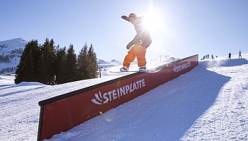 GameOfGoShred_Steinplatte_27012018_050